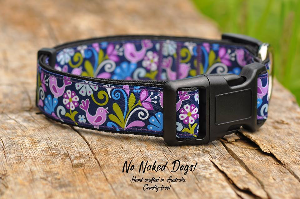 Birds of Paradise wide collar for big dogs only 32mm