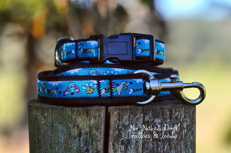 Dachshund turquoise collar & lead set small/med dogs