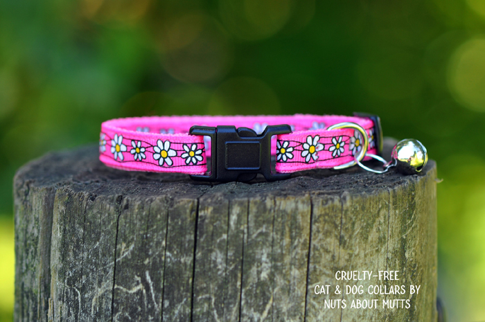 Daisy Chain cat collar FREE SHIPPING!