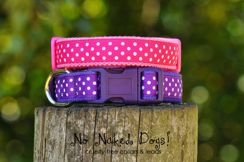 Dotty ribbon dog collar FREE POSTAGE!