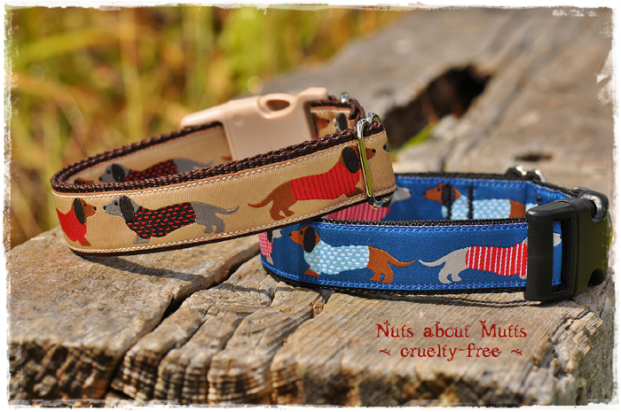 Blue Dachshund  ribbon dog collars for medium sized dogs