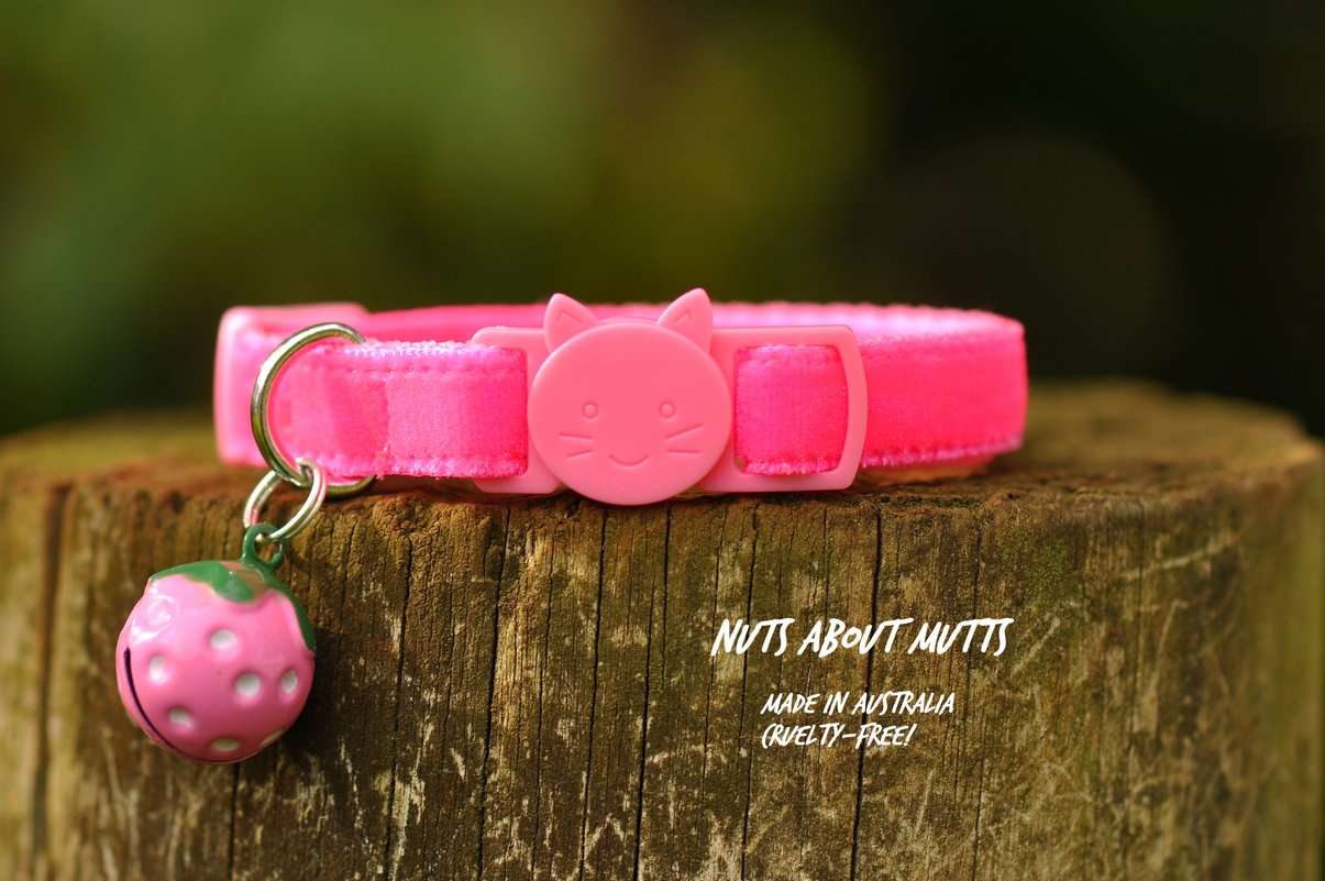 Plush Fluoro Pink Velvet cat collar 3 sizes