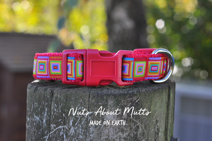 Happy Hippy dog collar for small to medium sized dogs