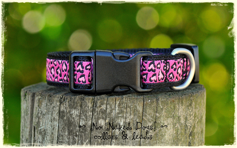 Hot Pink Leopard dog collar for small to medium sized dogs