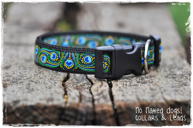 Green Peacock dog collar Med, Large, X-Large