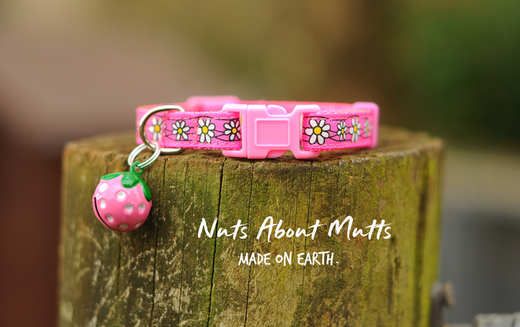 Daisy Chain Pink cat collar FREE SHIPPING!