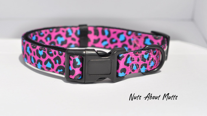 Go Wild Hot Pink & Turquoise Leopard medium, large