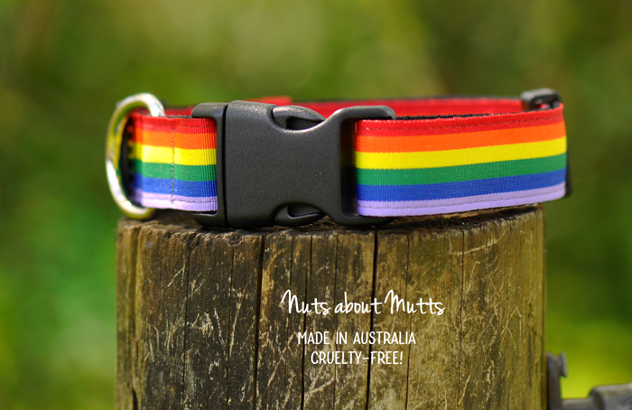 Rainbow LGBT Pride collars med to large sized dogs